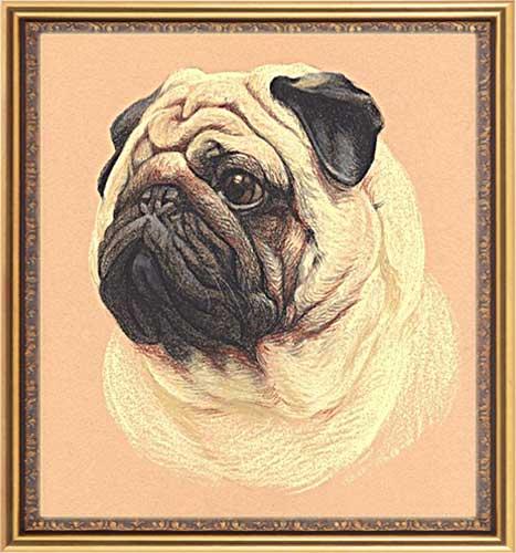 Framed pet portrait, dog and cat artwork