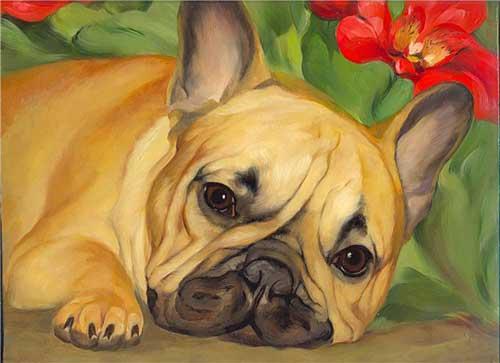 Pet, cat, dog modern pop art paint