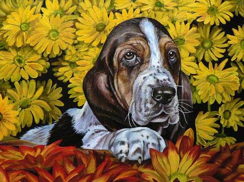 Pet portrait paintings, dog cat