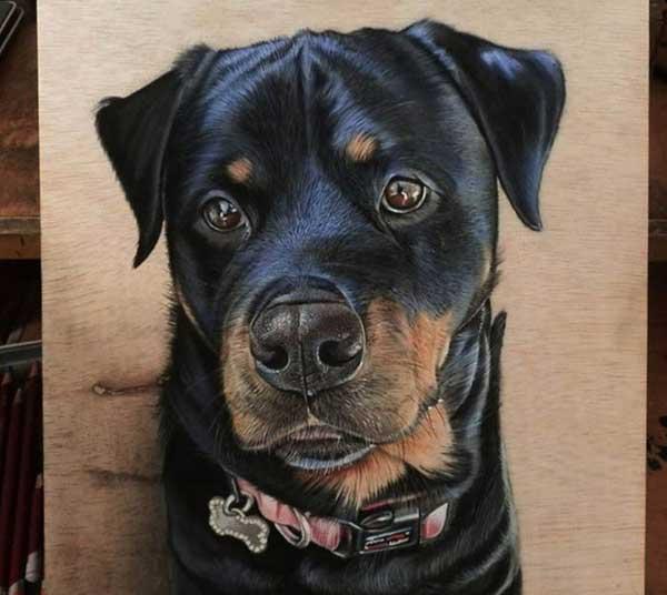 Unique pet paintings portraits on canvas