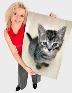 Pet portrait painting canvas prints - gift for pets lover