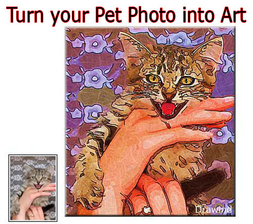 Custom Pet Portrait Painting from Photo - cat
