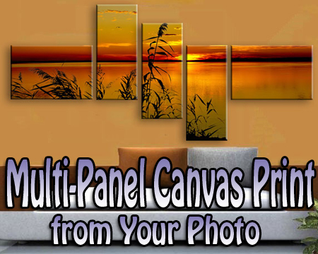 Multi-Panel canvas print