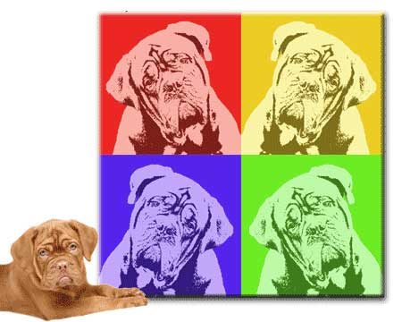 Modern Pet Portrait Pop Art Style
