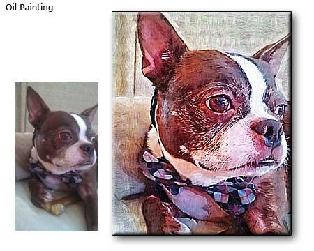 Custom pet colorful portrait commission