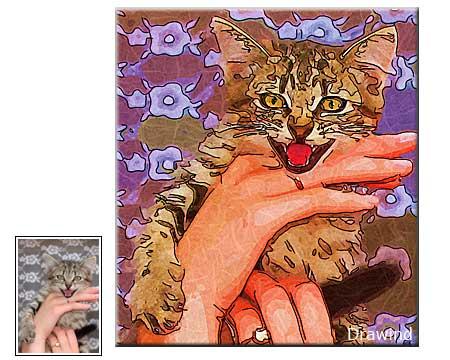 Colorful cat portrait on canvas