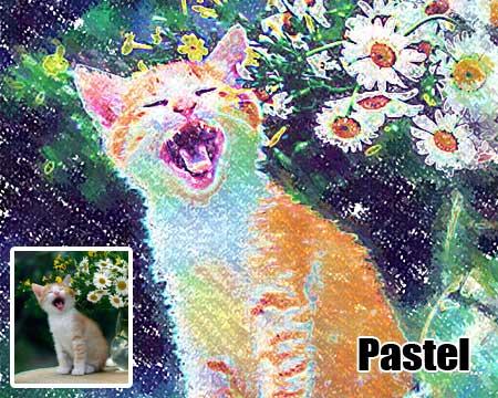 Cat portrait pastel painting from pet picture