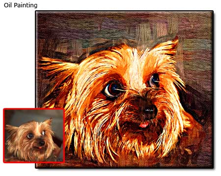 Furry dog portrait in oil