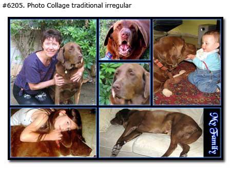 Pet photo collage traditional irregular