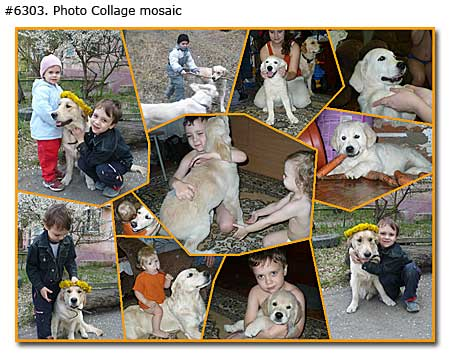 Pet and kids collage mosaic