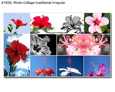 My Favorite Flowers Collage irregular