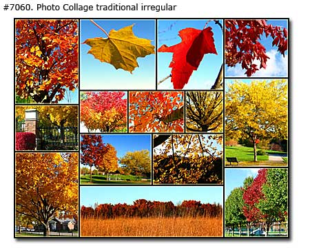 Colorful Fall Leaves Collage traditional