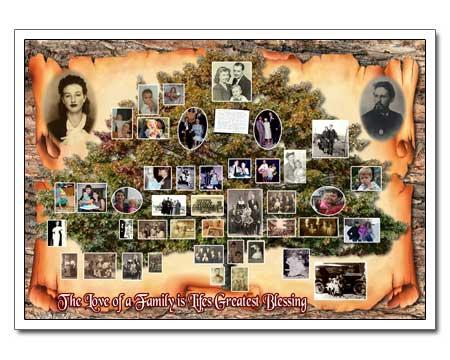 custom family tree posters