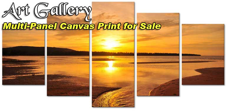 Canvas multi panels wall art print for sale