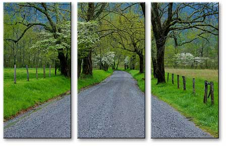 mp3010 multi panel canvas print 3 panels